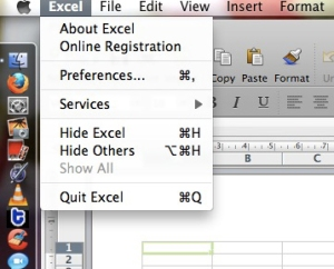 Excel preferences