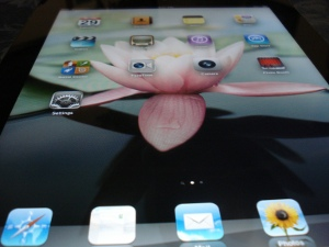 iPad2 screen